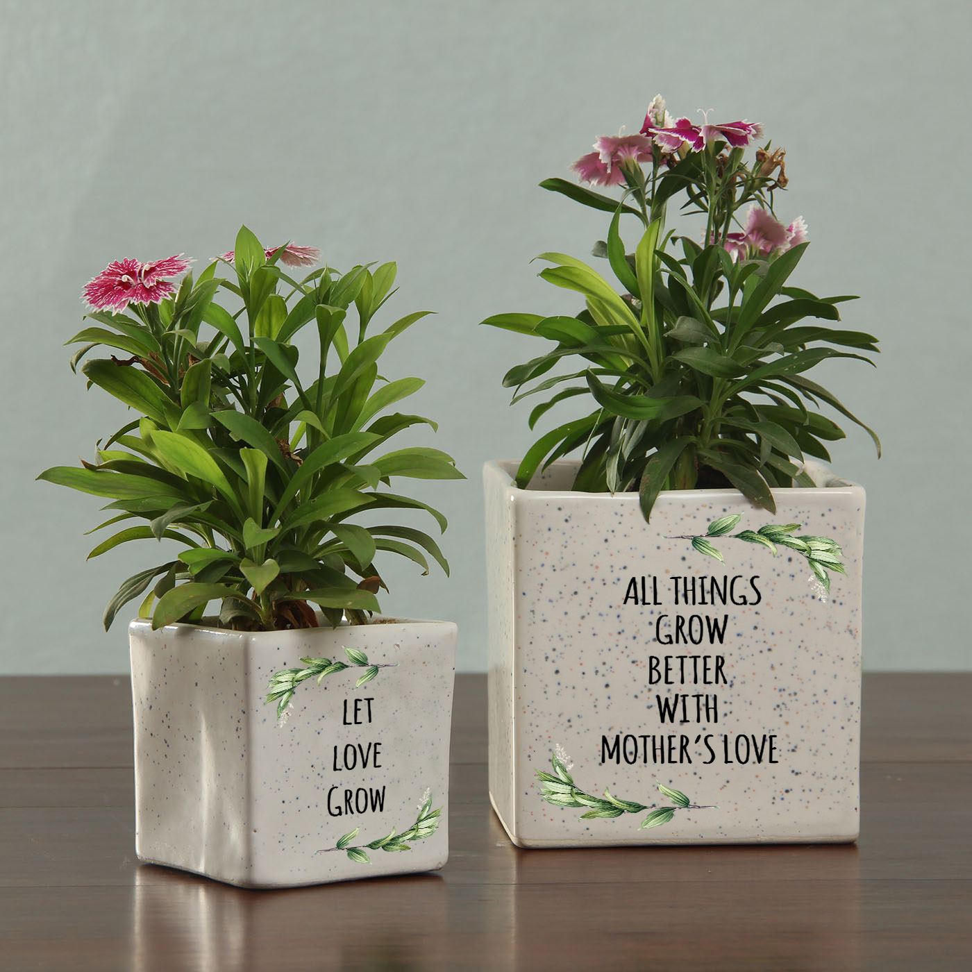 Personalized Ceramic Planters set for Mom