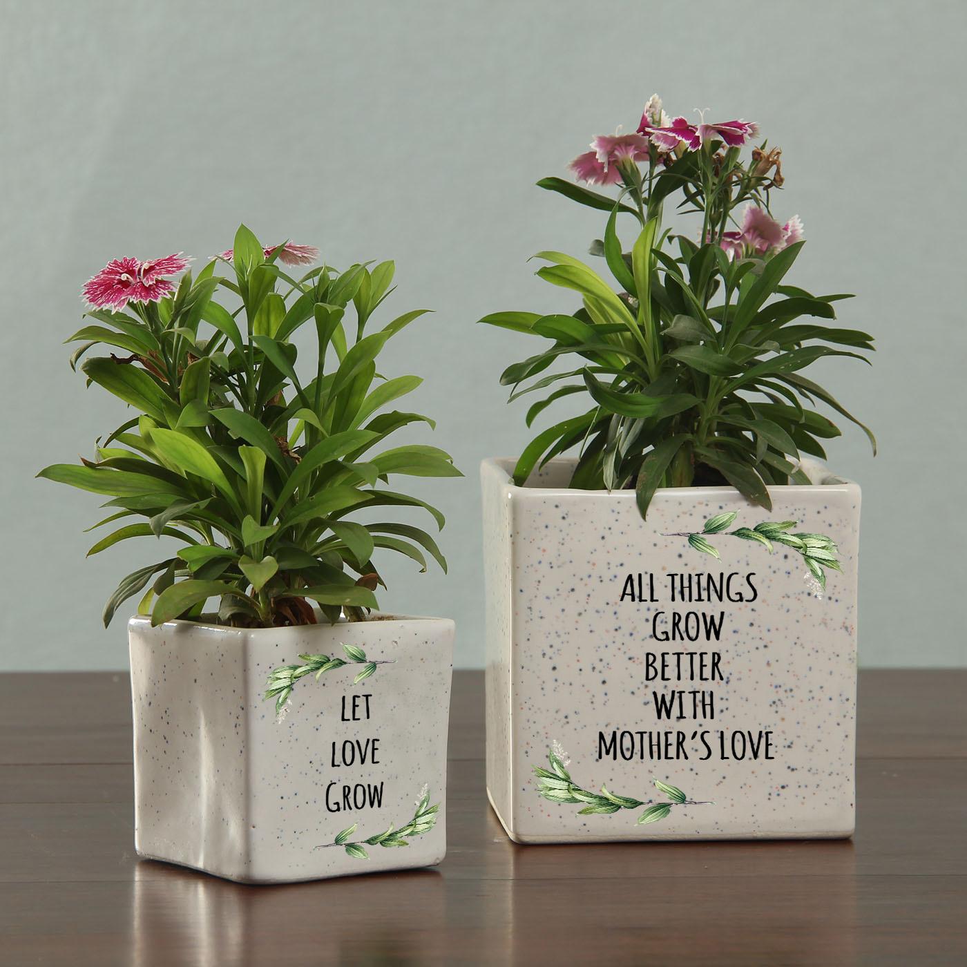 Personalized Ceramic Planters set for Mom