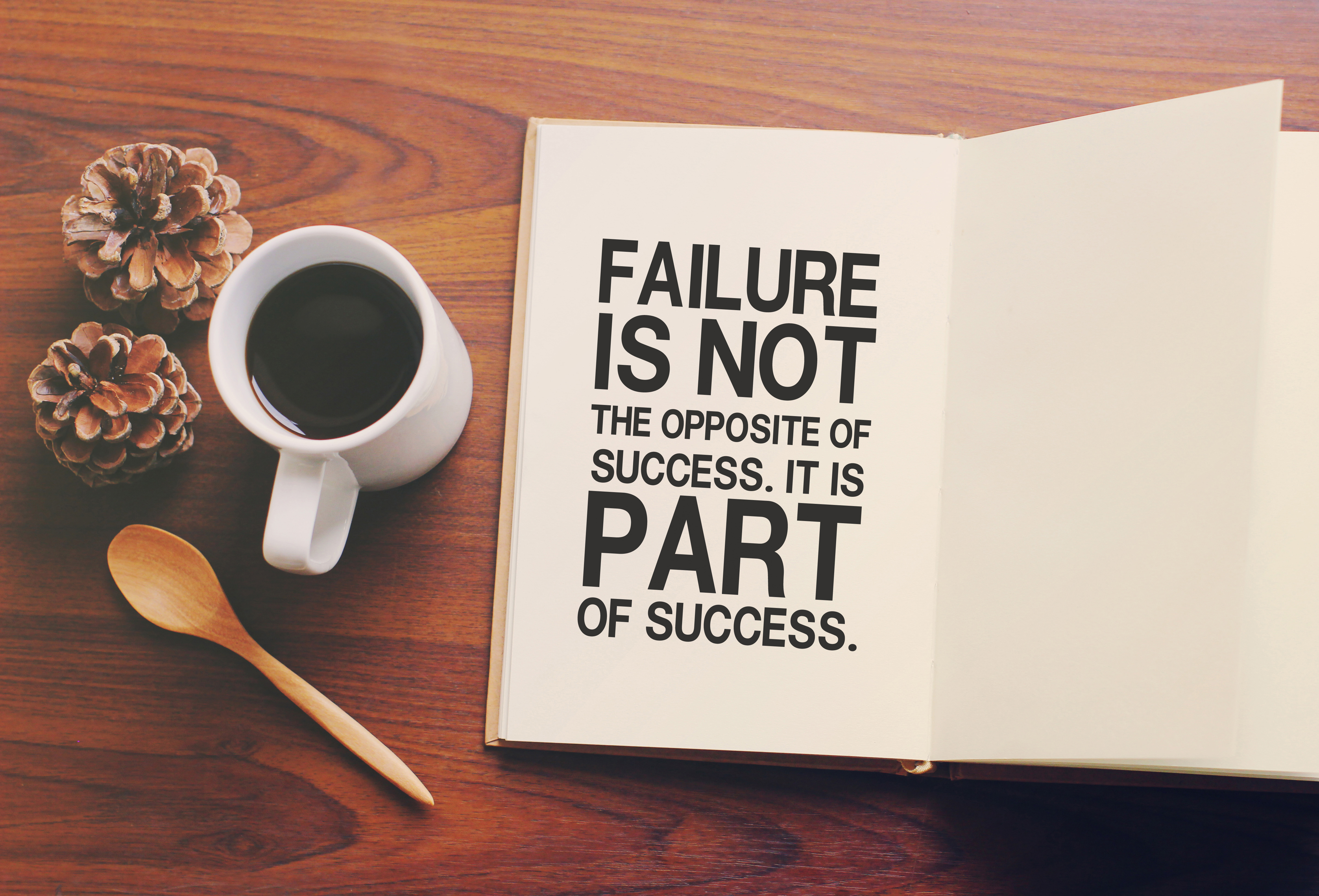 Failure is a Part of the Journey