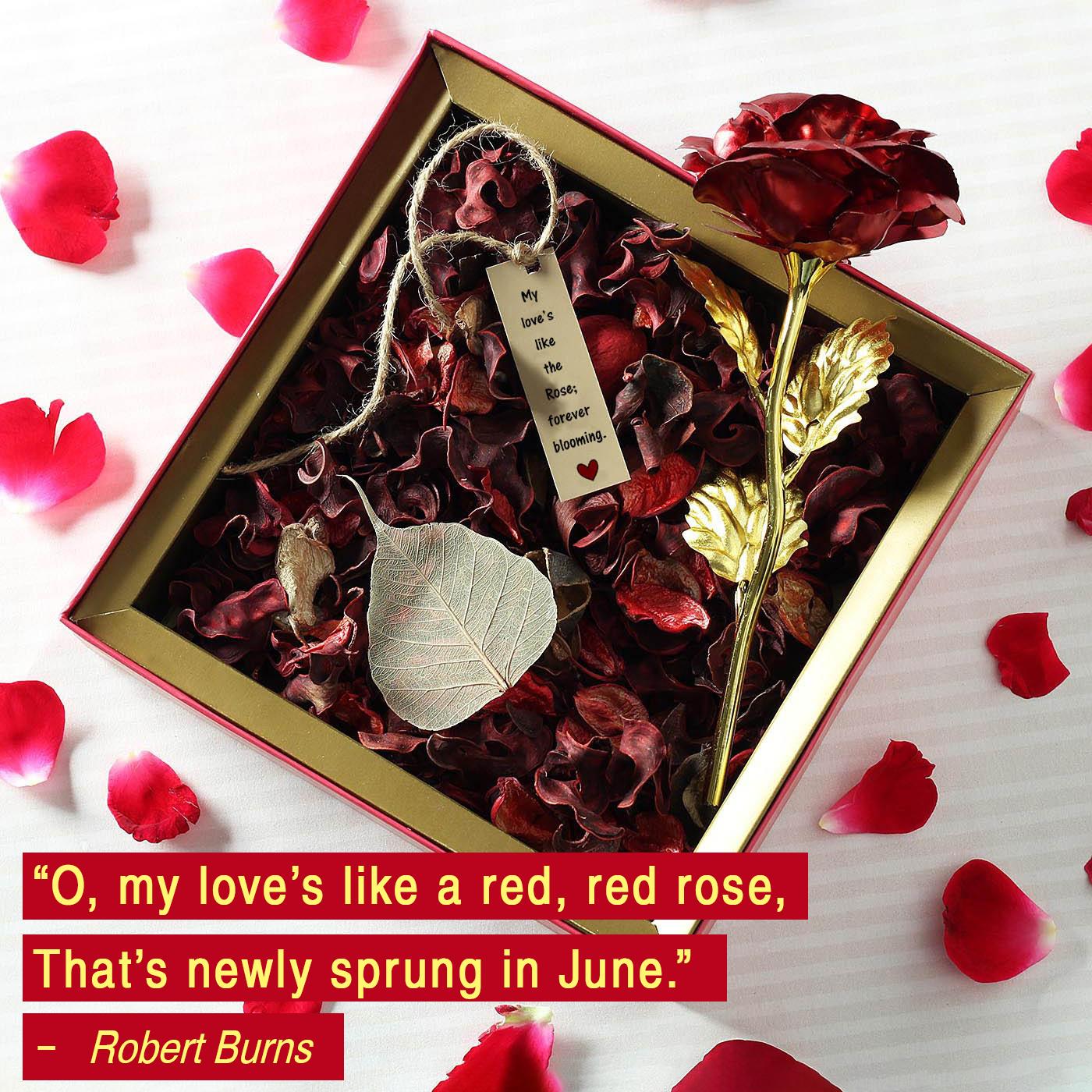 robert burns love quote